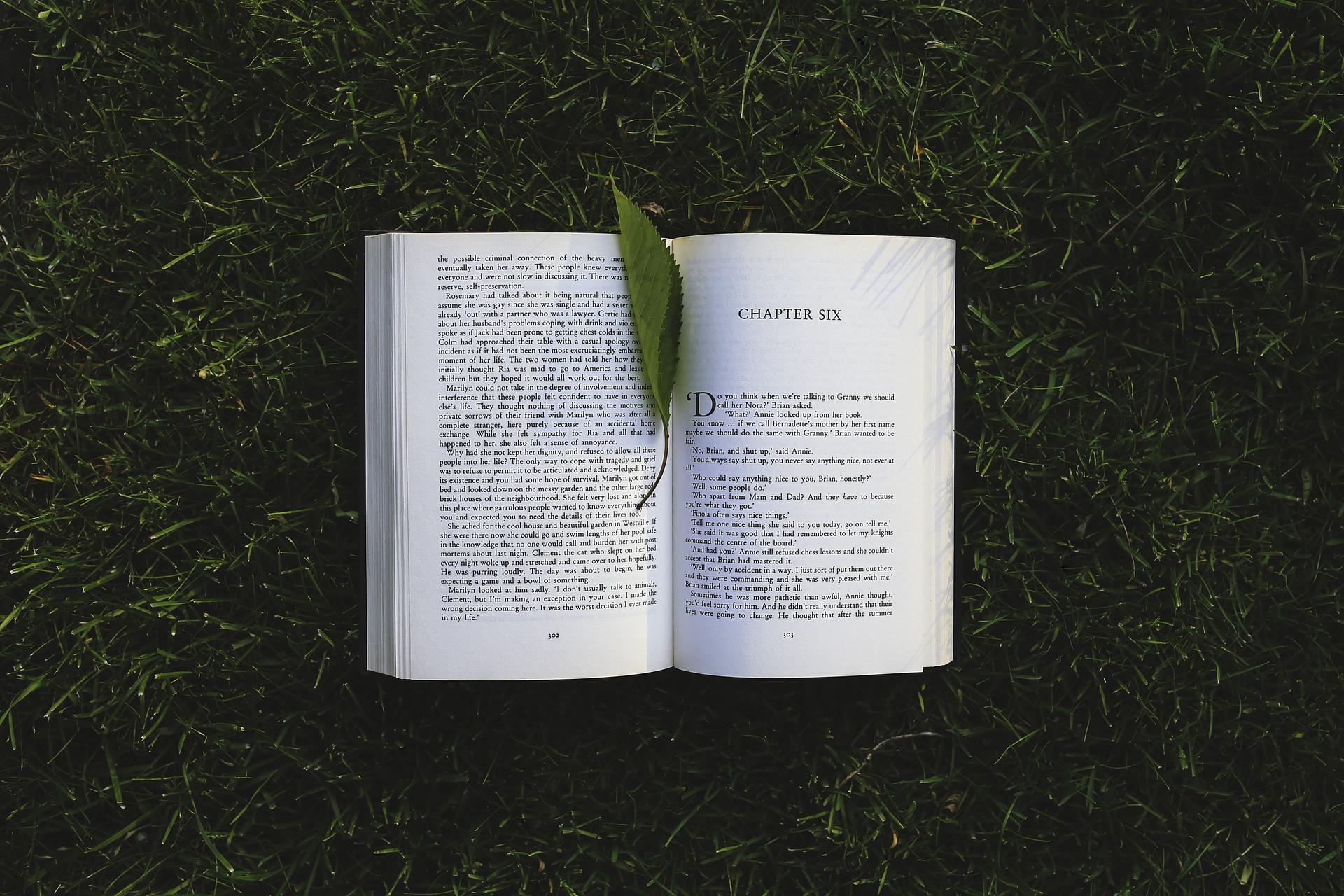 book-791765_1920